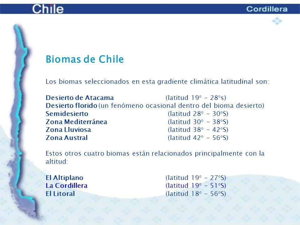 UBICACIÓN GEOGRÁFICA (Latitud)18° - 52° S ALTITUD2500 a 6800 msnm CLIMAfrío PRECIPITACIONESsobre los 2500 m principalmente nieve TEMPERATURAgeneralmente inferior a 0° C en invierno PERÍODO DE ACTIVIDAD BIOLÓGICAverano