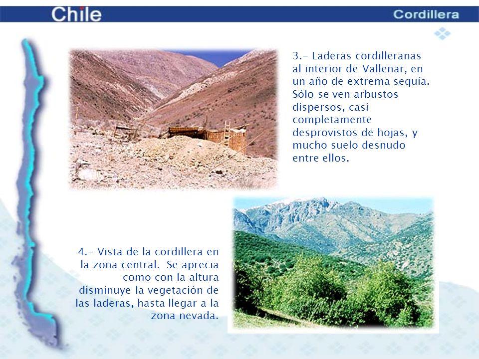 5.- Cordillera de la zona central.