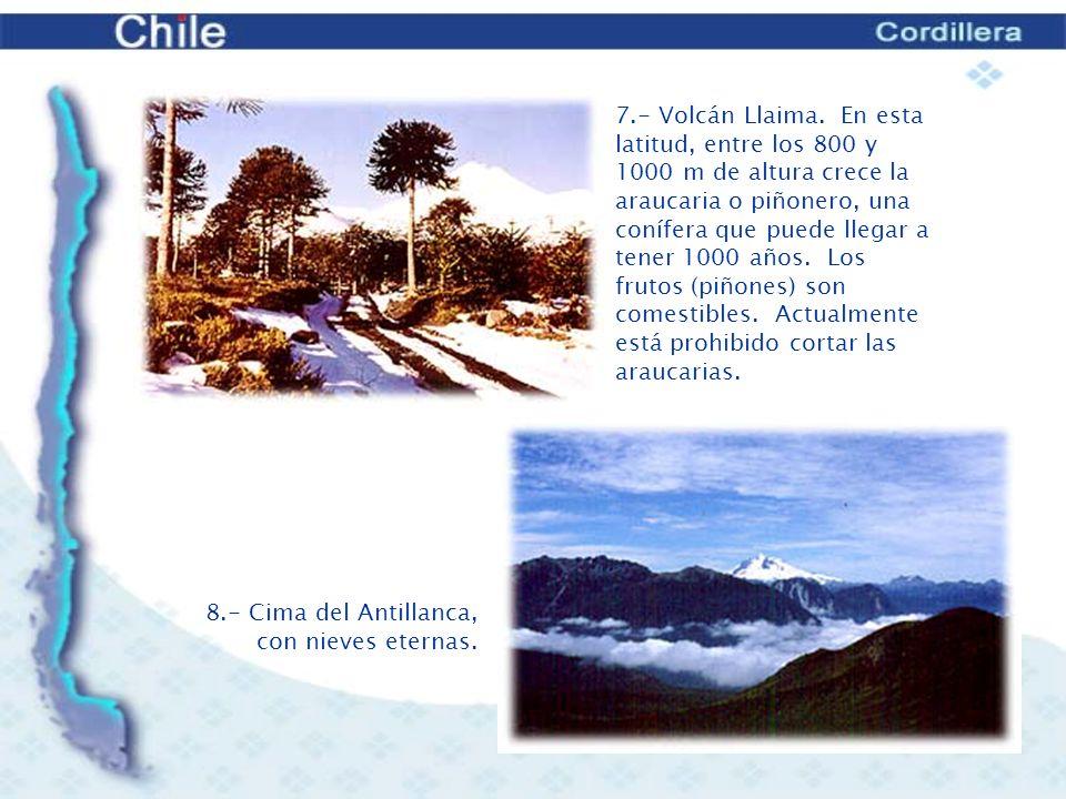9.- Volcán Osorno, cubierto de nieve.