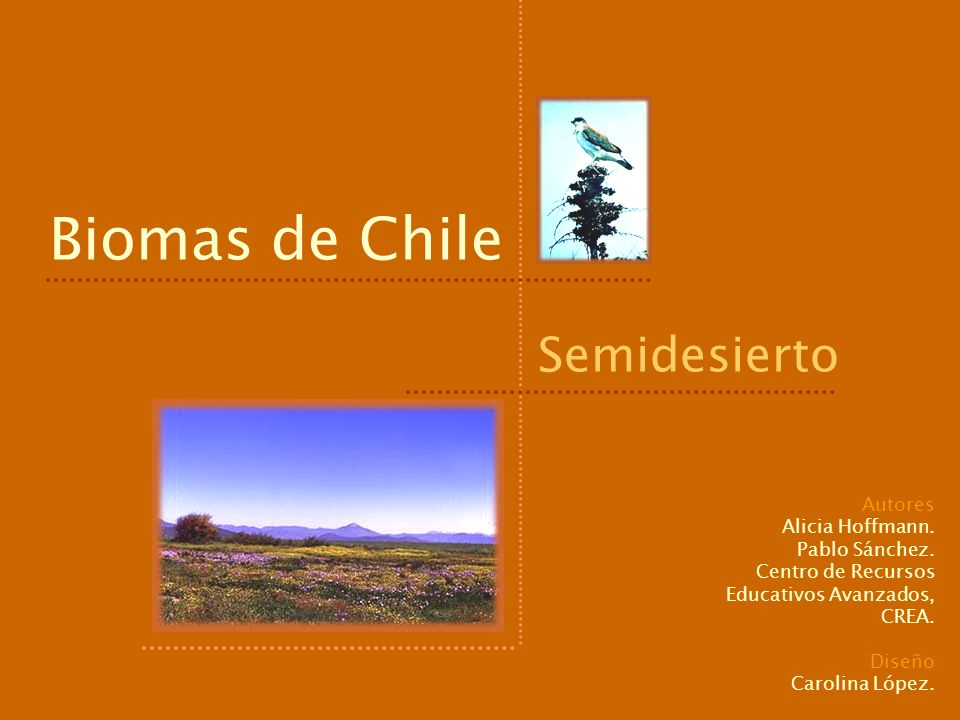 Biomas de Chile Semidesierto Autores Alicia Hoffmann. Pablo Sánchez. Centro de Recursos Educativos Avanzados, CREA. Diseño Carolina López.