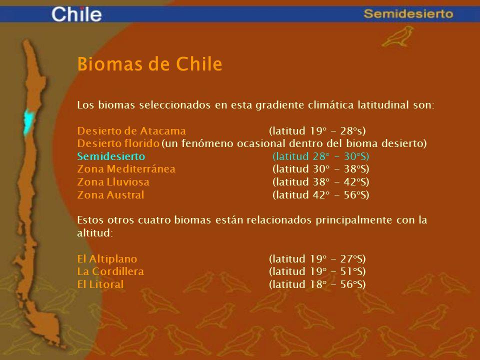 Biomas de Chile Los biomas seleccionados en esta gradiente climática latitudinal son: Desierto de Atacama(latitud 19° - 28°s) Desierto florido (un fen