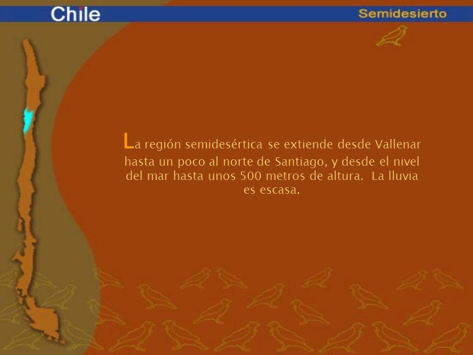L a región semidesértica se extiende desde Vallenar hasta un poco al norte de Santiago, y desde el nivel del mar hasta unos 500 metros de altura. La l