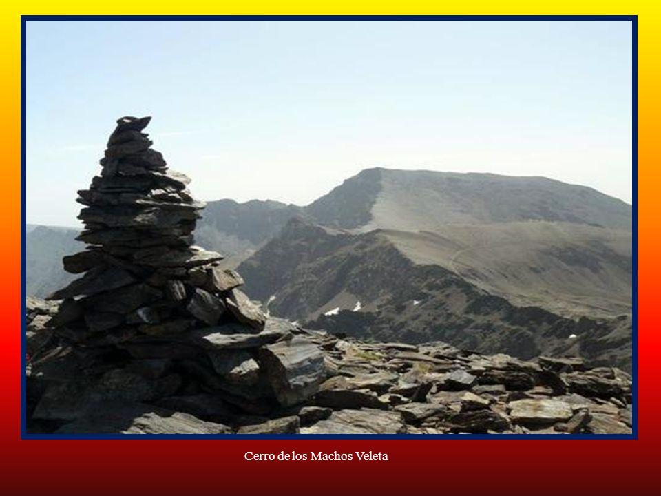 Cerro de los Machos a 3.324 metros de altura
