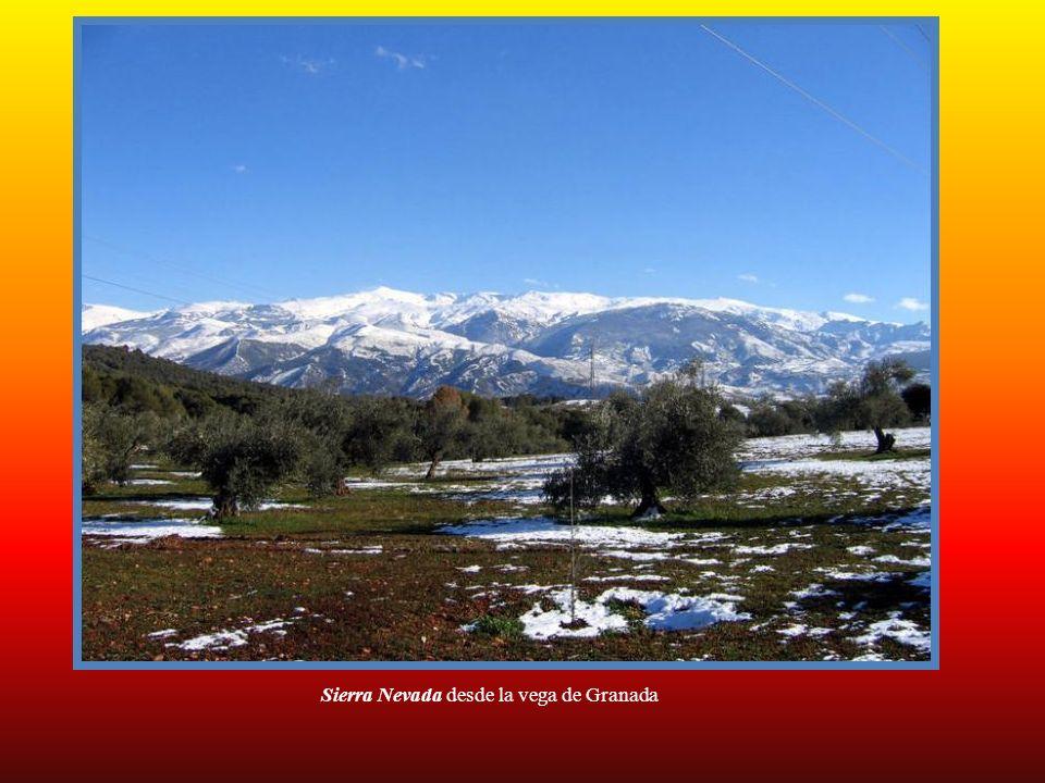 Laguna del Río Seco a 3.126 metros de altitud)