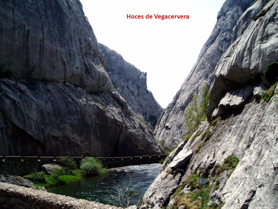 Hoces de Vegacervera 4