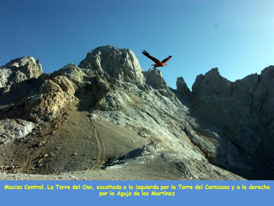 Los Urrieles, encabezados por el pico de los Cabrones y Torrecerredo, desde las inmediaciones del lago Enol en el Macizo Central