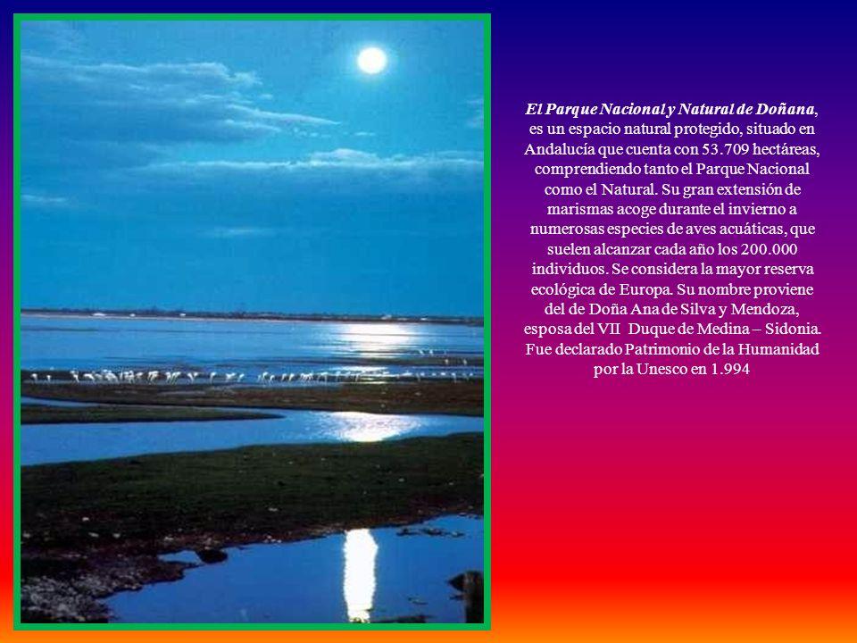 Imágenes y Documentación: Internet Es una creación de miércoles, 05 de febrero de 2014 Bandera autonómica de Andalucía Música: Salve Rociera