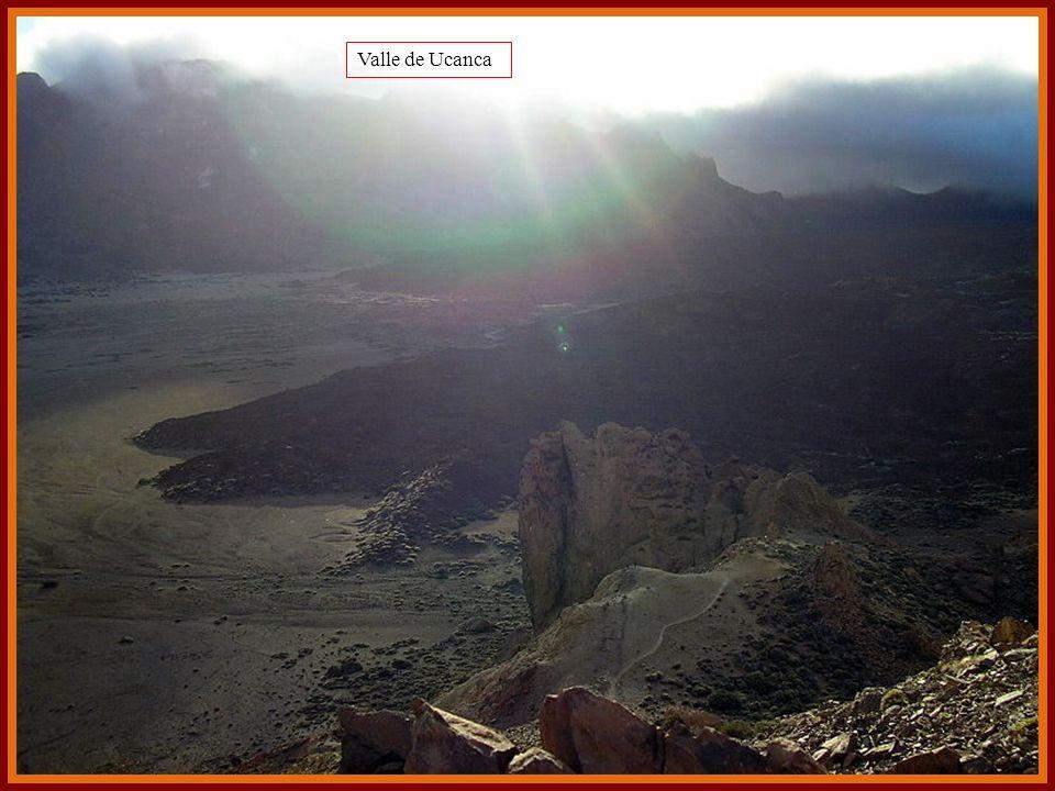 Falda del Teide