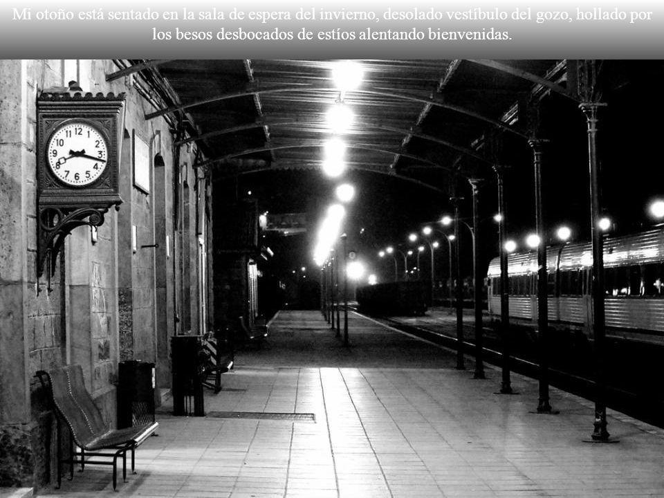 Lleva a nadie y va a nunca el tren que cada noche descarrila en mis sueños.