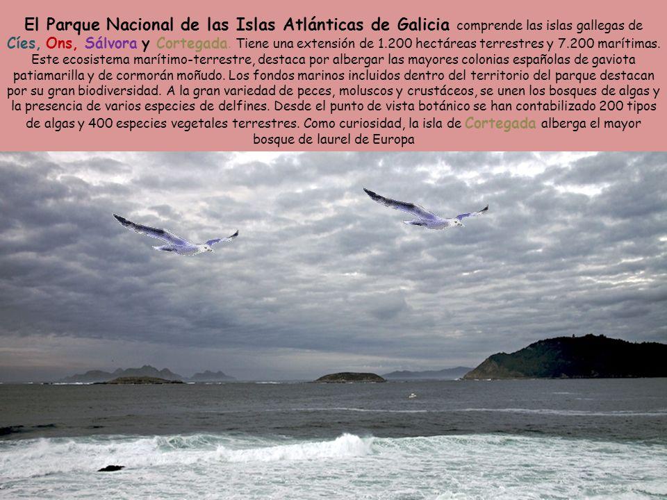 El Parque Nacional de las Islas Atlánticas de Galicia comprende las islas gallegas de Cíes, Ons, Sálvora y Cortegada.