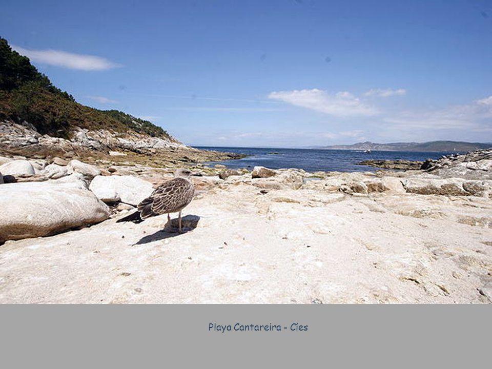 Playa Cantareira - Cíes
