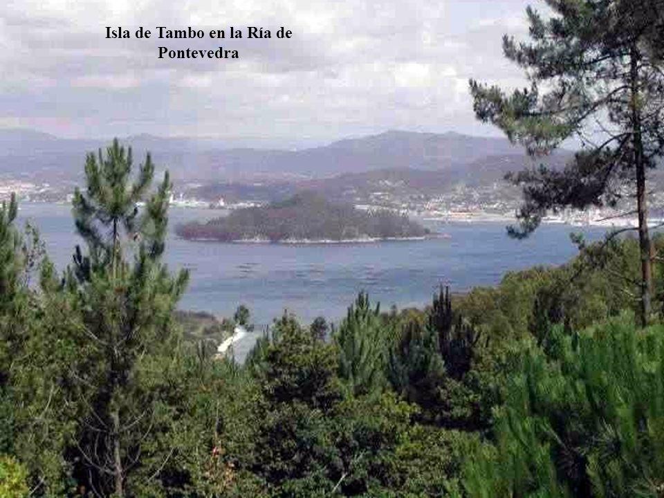 La Ría de Pontevedra, ubicada en la provincia del mismo nombre, es muy turística y en ella están los municipios de Marín (escuela naval militar), Sanx