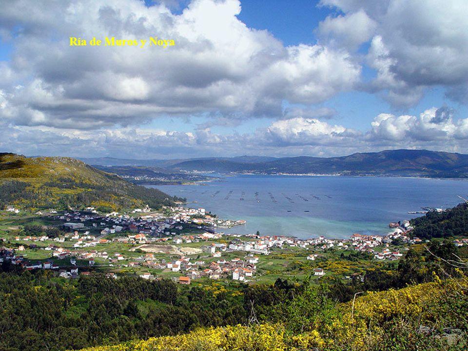 La Ría de Pontevedra, ubicada en la provincia del mismo nombre, es muy turística y en ella están los municipios de Marín (escuela naval militar), Sanxenxo, Bueu, Portonovo y Combarro.