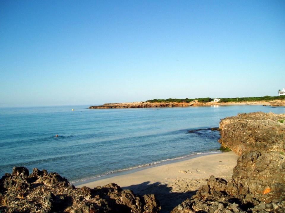 Es Platjals son una serie de calitas, de mayor o menor dimensión en función de que el mar haya arrojado o llevado arena.