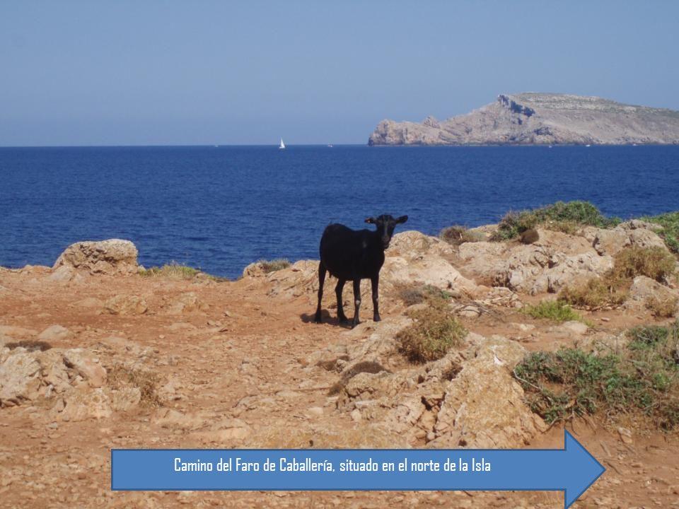 Camino del Faro de Caballería, situado en el norte de la Isla