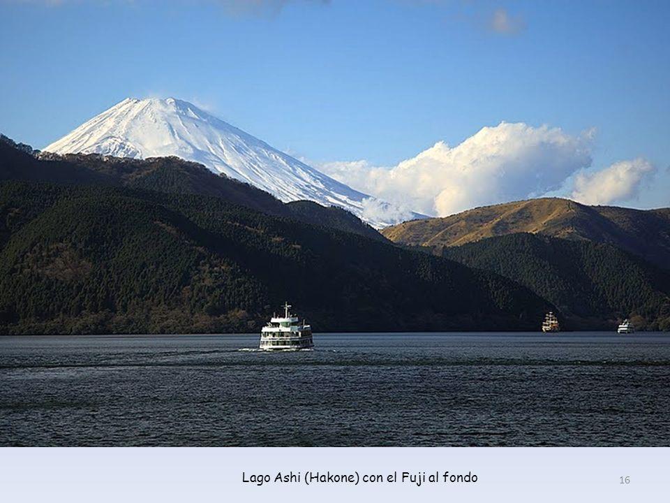 El majestuoso Fuji, visto desde el barco en el lago 15
