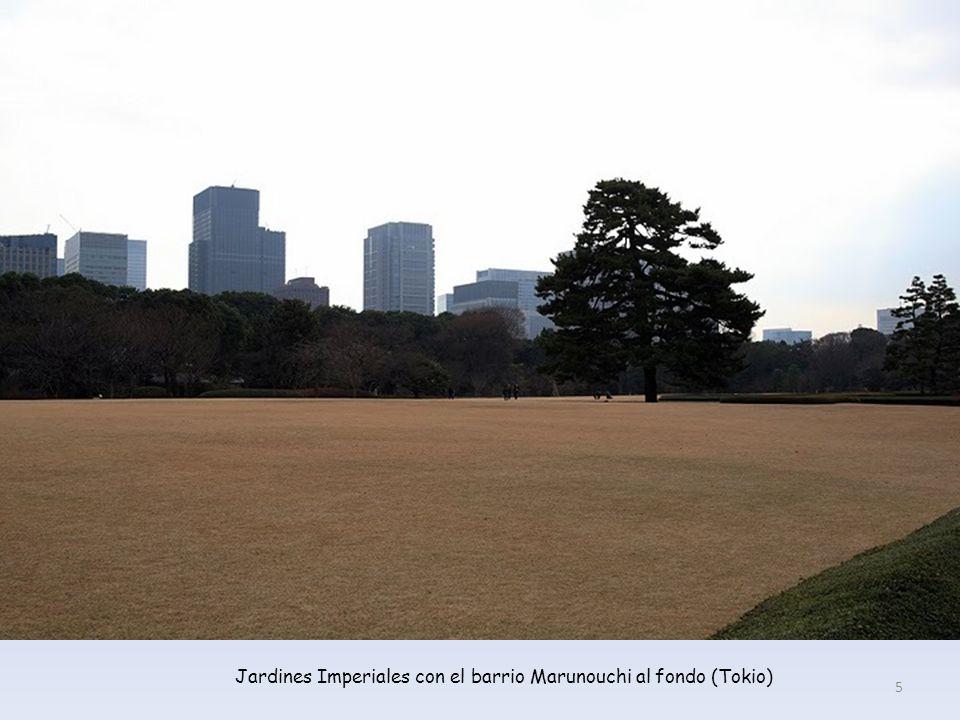Jardines Imperiales con el barrio Marunouchi al fondo (Tokio) 5