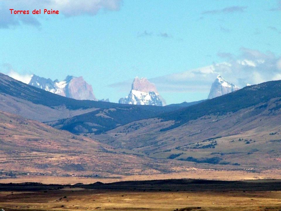 La Patagonia Argentina, también llamada región patagónica, es una de las regiones geográficas de la Argentina, que comprende la parte de la patagonia que abarca este país.