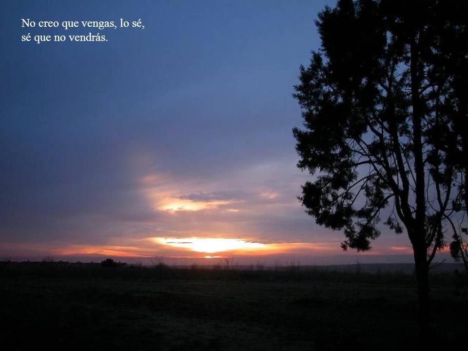 Te espero cuando la noche se haga día, suspiros de esperanza ya perdidas.