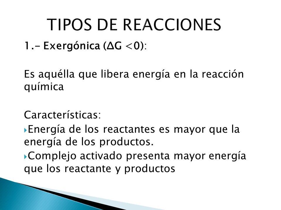 1.- Exergónica (ΔG <0): Es aquélla que libera energía en la reacción química Características: Energía de los reactantes es mayor que la energía de los