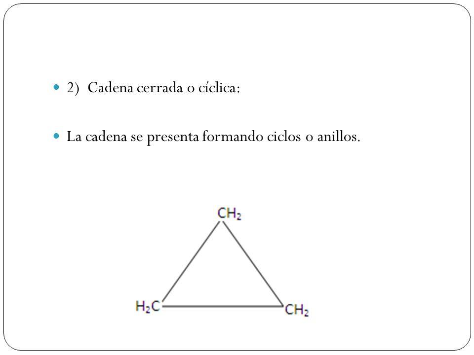 2) Cadena cerrada o cíclica: La cadena se presenta formando ciclos o anillos.