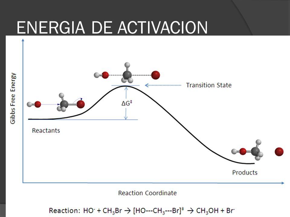 Concentración de los reactantes Ley de Acción de las Masas: La velocidad de una reacción es directamente proporcional al producto de las concentraciones molares de los reactantes, elevadas a potencias que son iguales a los respectivos coeficientes de la ecuación química.