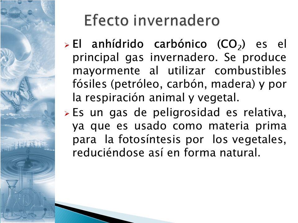 El anhídrido carbónico (CO 2 ) es el principal gas invernadero. Se produce mayormente al utilizar combustibles fósiles (petróleo, carbón, madera) y po