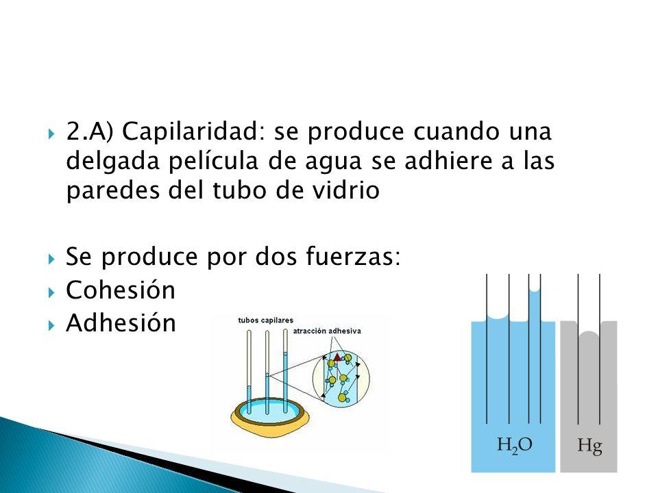 2.A) Capilaridad: se produce cuando una delgada película de agua se adhiere a las paredes del tubo de vidrio Se produce por dos fuerzas: Cohesión Adhe