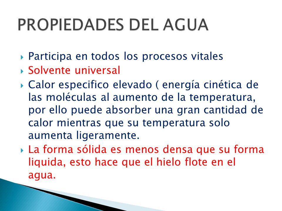Participa en todos los procesos vitales Solvente universal Calor especifico elevado ( energía cinética de las moléculas al aumento de la temperatura,