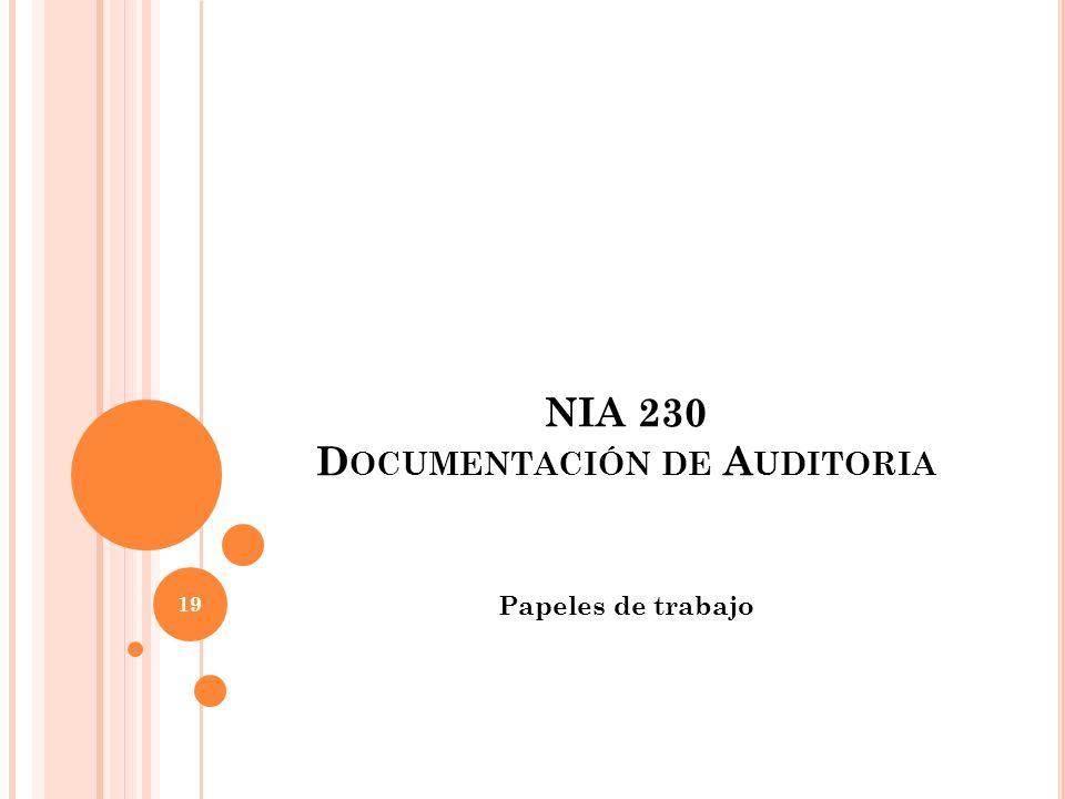 NIA 230 D OCUMENTACIÓN DE A UDITORIA Papeles de trabajo 19