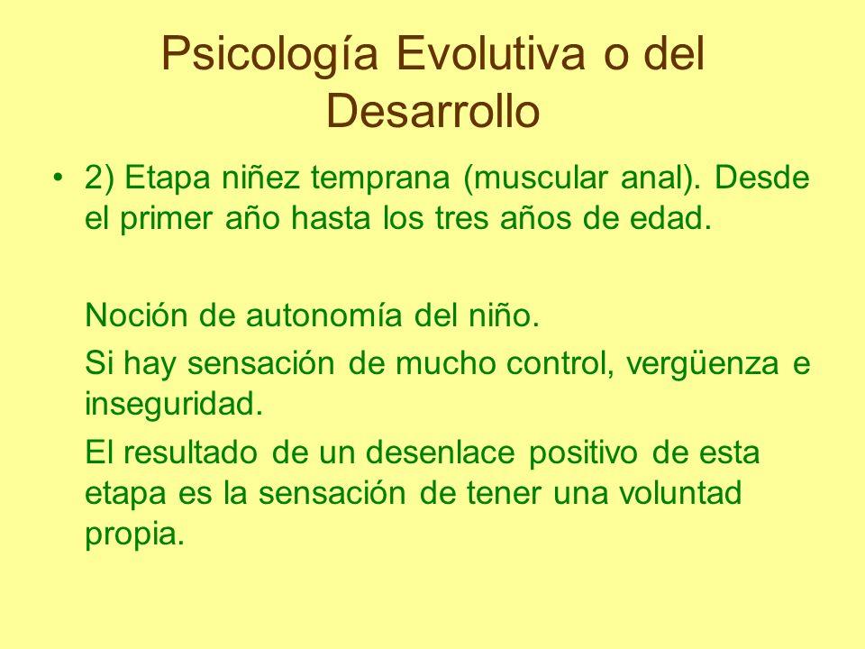 Psicología Evolutiva o del Desarrollo 2) Etapa niñez temprana (muscular anal). Desde el primer año hasta los tres años de edad. Noción de autonomía de