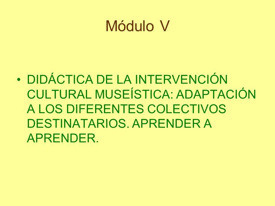 Módulo V DIDÁCTICA DE LA INTERVENCIÓN CULTURAL MUSEÍSTICA: ADAPTACIÓN A LOS DIFERENTES COLECTIVOS DESTINATARIOS. APRENDER A APRENDER.