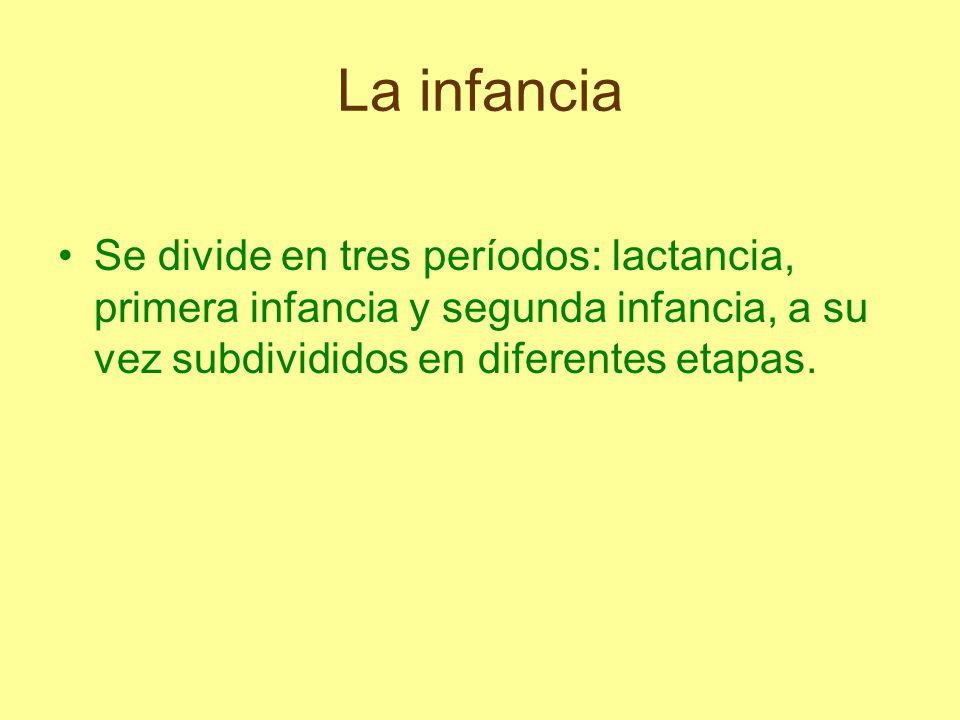 Se divide en tres períodos: lactancia, primera infancia y segunda infancia, a su vez subdivididos en diferentes etapas.