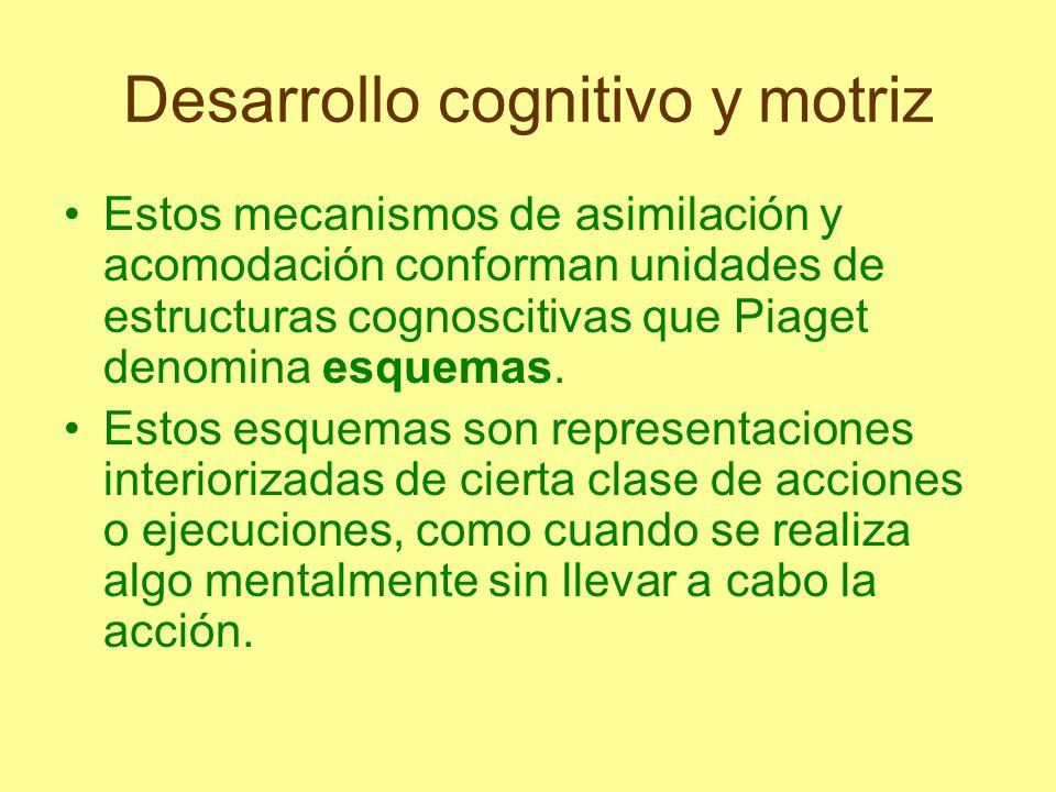 Desarrollo cognitivo y motriz Puede decirse que el esquema constituye un plan cognoscitivo que establece la secuencia de pasos que conducen a la solución de un problema.
