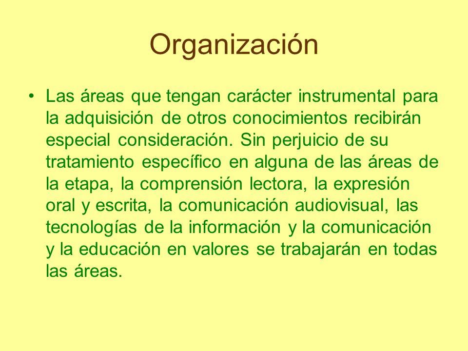 Organización Las áreas que tengan carácter instrumental para la adquisición de otros conocimientos recibirán especial consideración. Sin perjuicio de