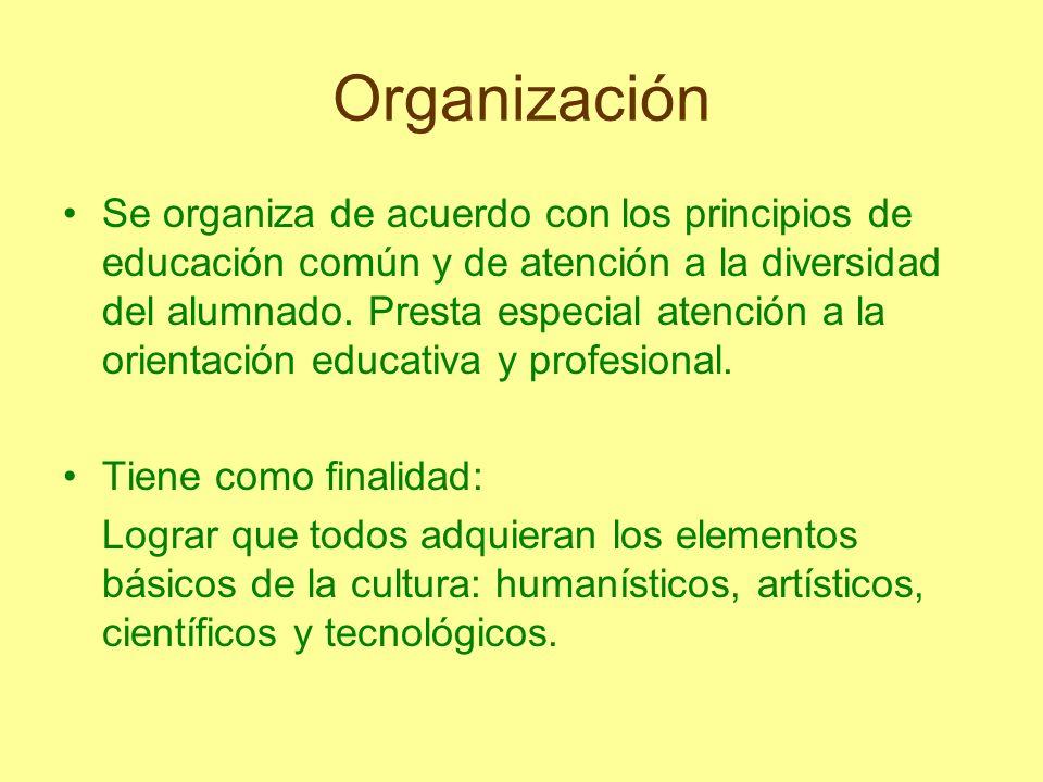 Organización Se organiza de acuerdo con los principios de educación común y de atención a la diversidad del alumnado. Presta especial atención a la or