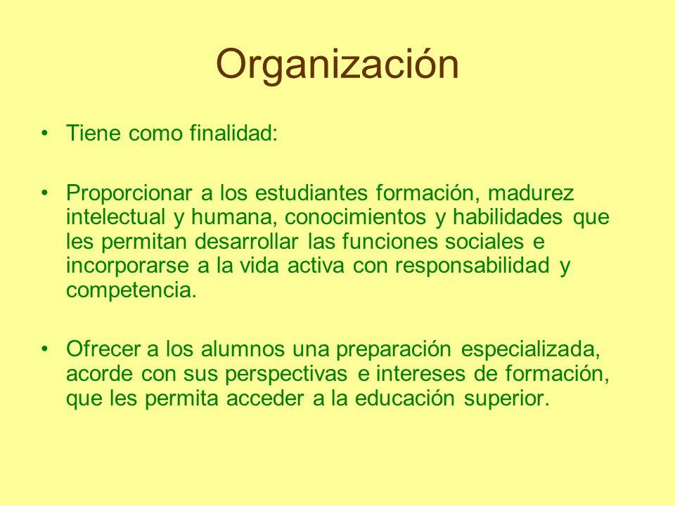 Organización Tiene como finalidad: Proporcionar a los estudiantes formación, madurez intelectual y humana, conocimientos y habilidades que les permita
