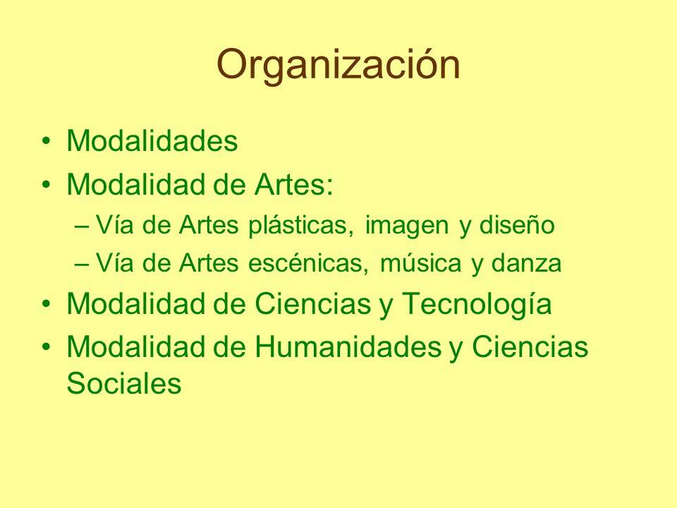 Organización Modalidades Modalidad de Artes: –Vía de Artes plásticas, imagen y diseño –Vía de Artes escénicas, música y danza Modalidad de Ciencias y