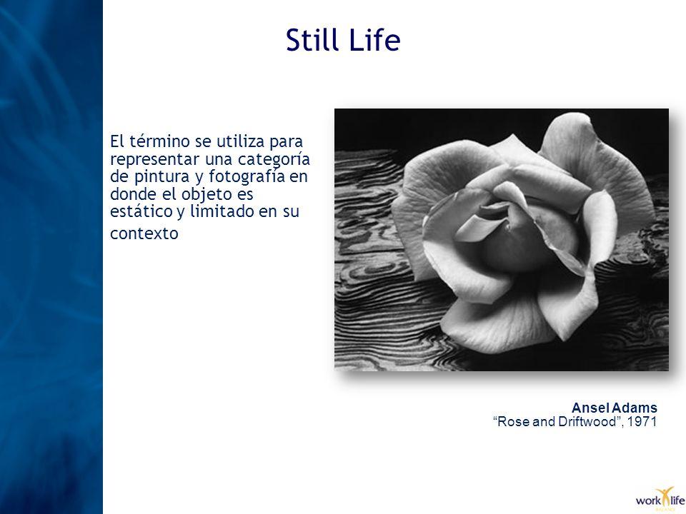 Still Life El término se utiliza para representar una categoría de pintura y fotografía en donde el objeto es estático y limitado en su contexto Ansel