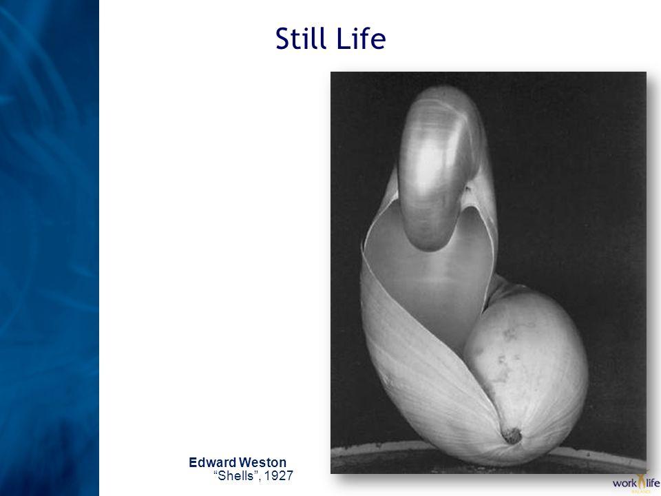 Still Life Edward WestonShells, 1927