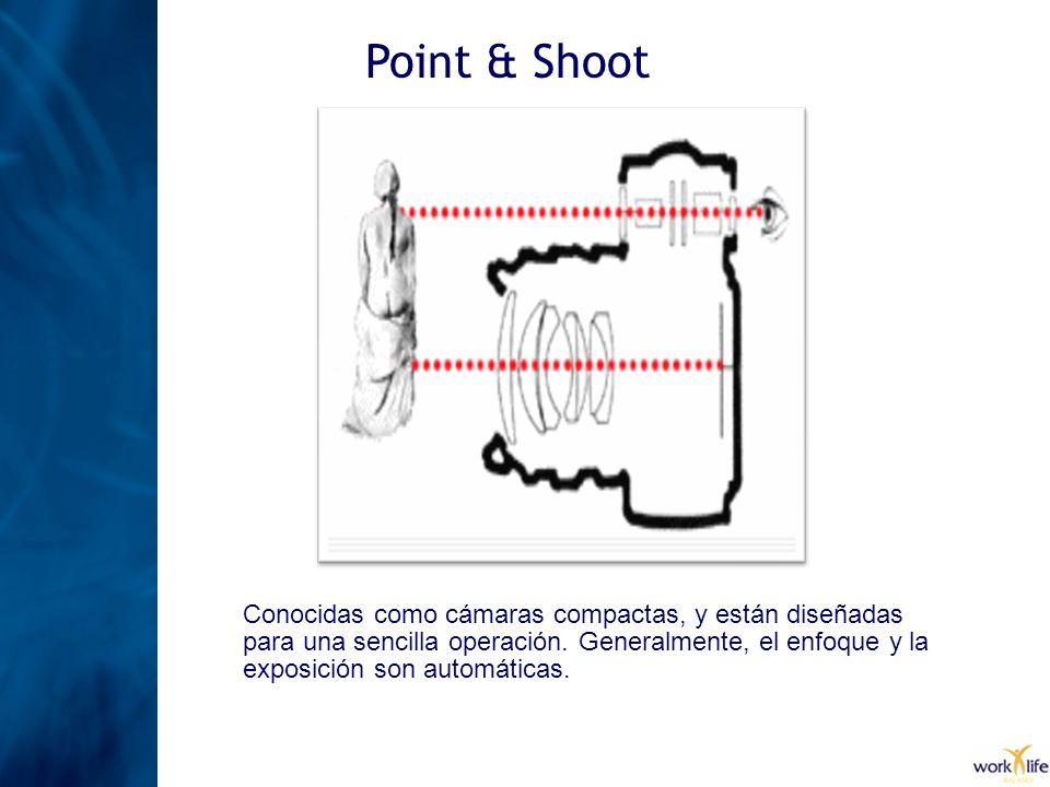 Point & Shoot Conocidas como cámaras compactas, y están diseñadas para una sencilla operación. Generalmente, el enfoque y la exposición son automática