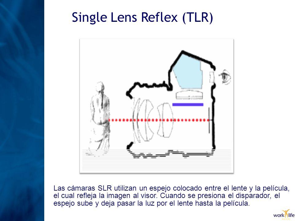 Single Lens Reflex (TLR) Las cámaras SLR utilizan un espejo colocado entre el lente y la película, el cual refleja la imagen al visor. Cuando se presi