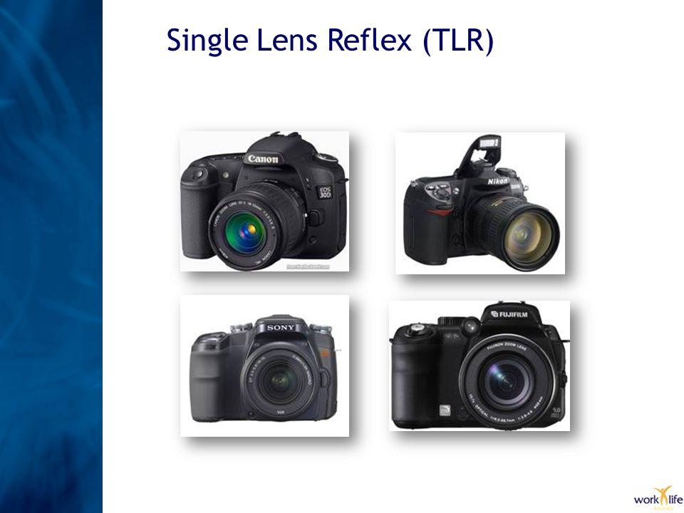 Single Lens Reflex (TLR)