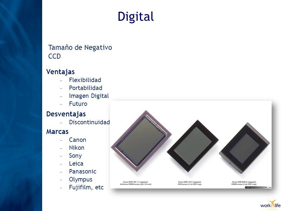 Digital Ventajas – Flexibilidad – Portabilidad – Imagen Digital – Futuro Desventajas – Discontinuidad Tamaño de Negativo CCD Marcas – Canon – Nikon –