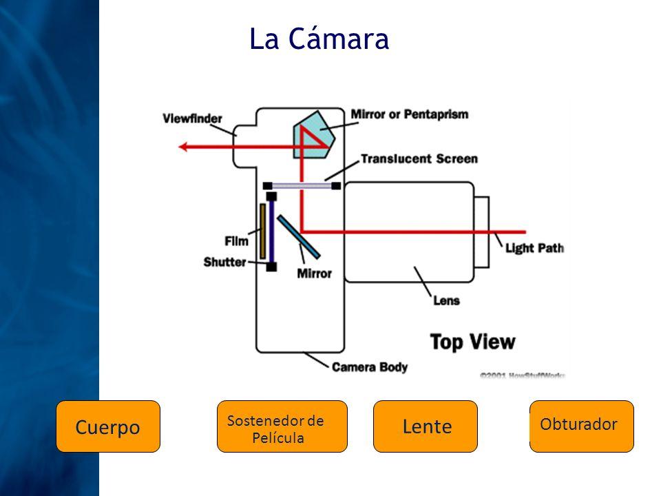Exposición Exposición es el proceso de permitir el paso de la luz desde el lente hasta la película a través de un orificio determinado por un período de tiempo establecido Apertura Tiempo de Exposición Al tamaño del orificio por donde pasa la luz del lente hasta la película es lo que llamamos APETURA El tiempo en el que la luz pasa por el lente hasta la película es lo que llamamos TIEMPO DE EXPOSICIÓN Profundidad de Campo