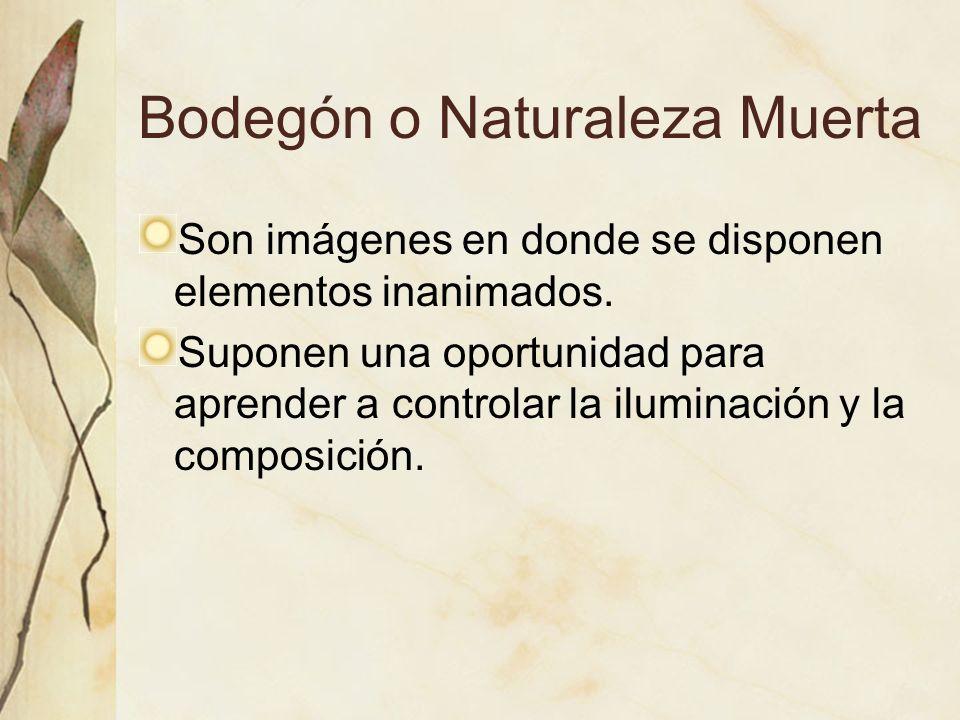 Bodegón o Naturaleza Muerta Son imágenes en donde se disponen elementos inanimados. Suponen una oportunidad para aprender a controlar la iluminación y