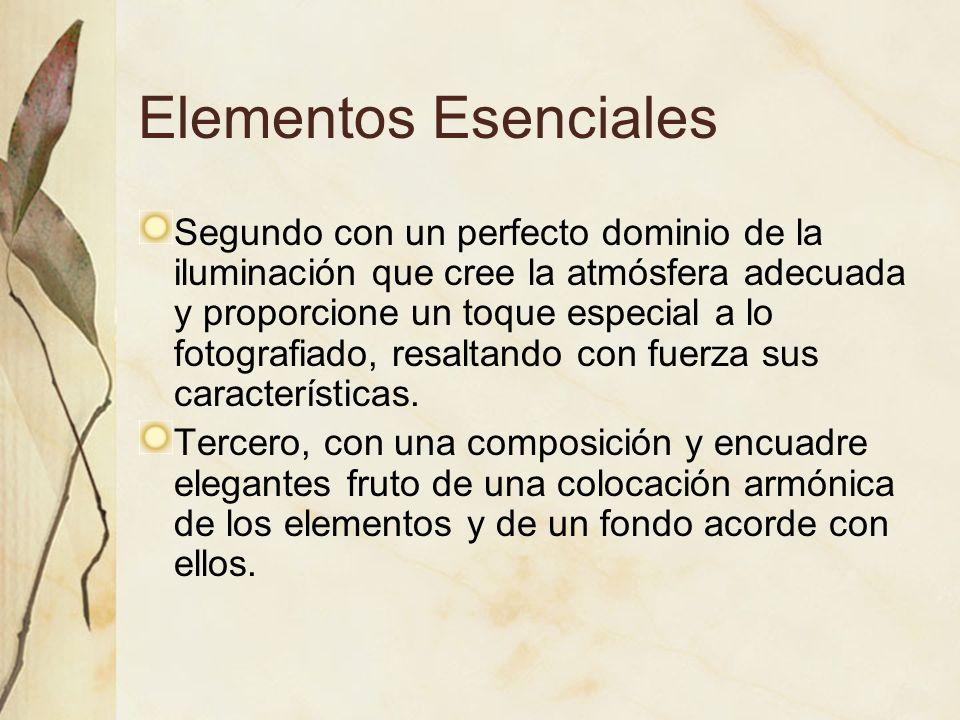 Elementos Esenciales Segundo con un perfecto dominio de la iluminación que cree la atmósfera adecuada y proporcione un toque especial a lo fotografiad