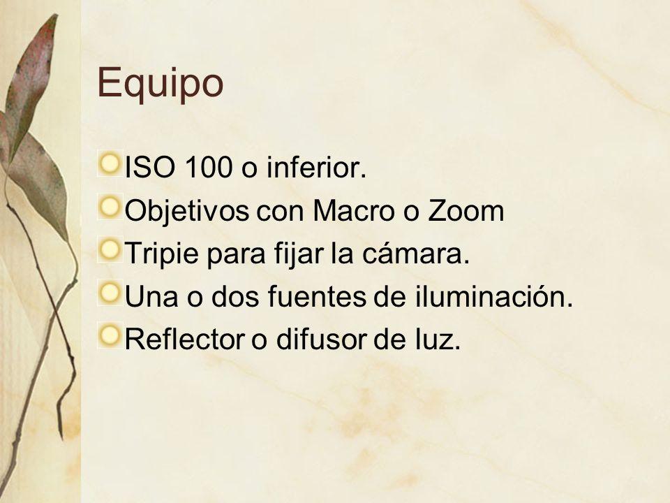 Equipo ISO 100 o inferior. Objetivos con Macro o Zoom Tripie para fijar la cámara. Una o dos fuentes de iluminación. Reflector o difusor de luz.