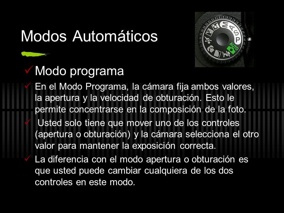 Modos Automáticos Modo programa En el Modo Programa, la cámara fija ambos valores, la apertura y la velocidad de obturación. Esto le permite concentra