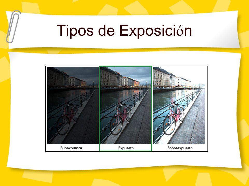 Tipos de Exposici ó n